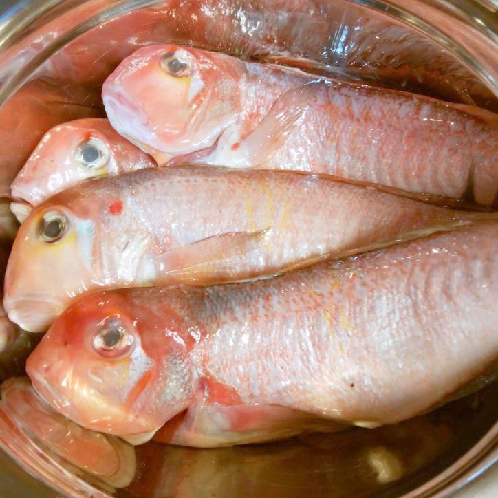 山口県沖で穫れた秋の高級魚「天然の甘鯛」
